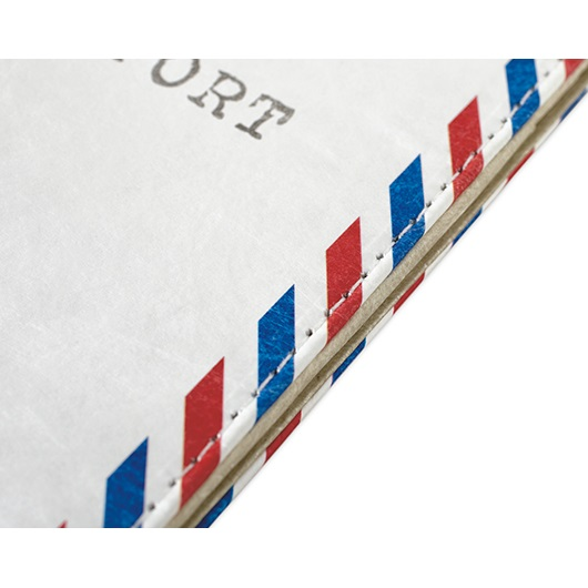 Dynomighty Tyvek Passport Cover - Envelope